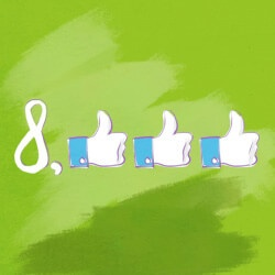 how facebook page got 8,000 likes without ads