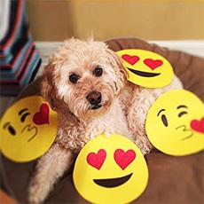 emojis on instagram