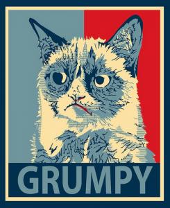 Facebook Cat memes