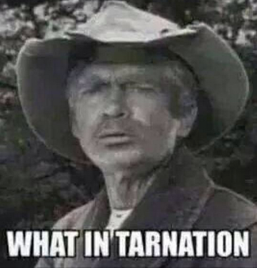 Jed clampett what in tarnation