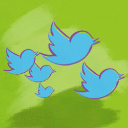 best twitter lists to follow