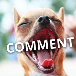 get-more-comments-on-facebook