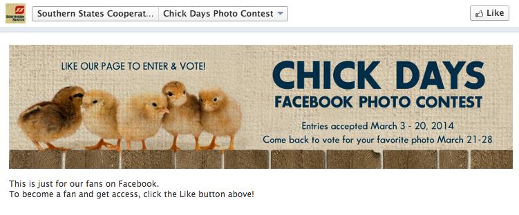 facebook-contest
