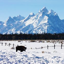 most viral facebook photos from U.S. National Parks