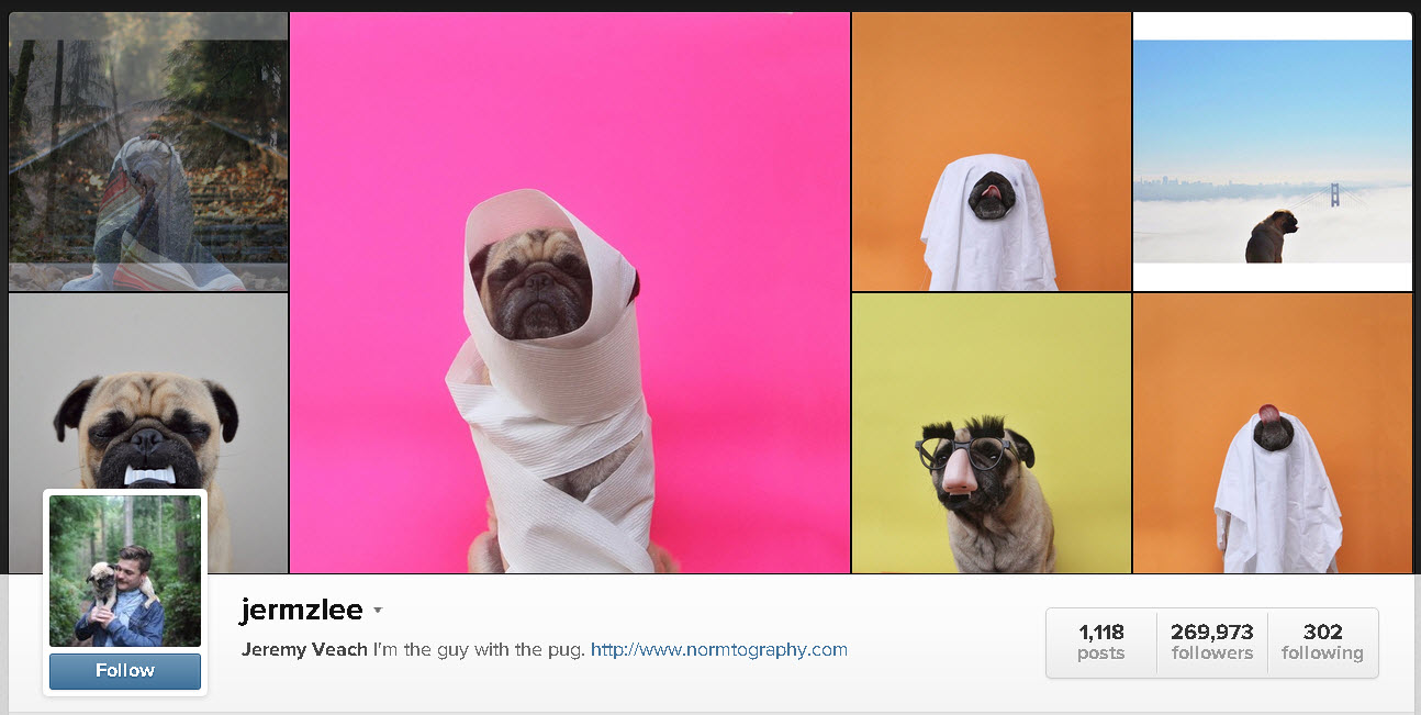 funny-instagram-accounts