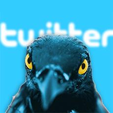 secret twitter hack