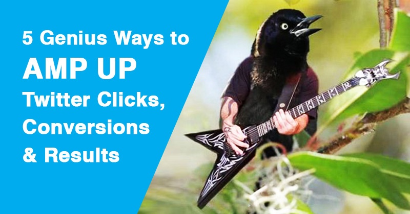 5 Genius Ways to AMP Up Twitter Clicks, Conversions and Results