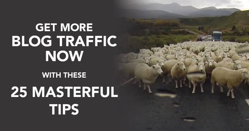 Get More Blog Traffic NOW with These 25 Masterful Tips