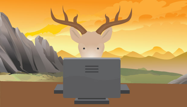 How a Facebook Page About Deer Went From 0 to 500K Likes (with No Ads)