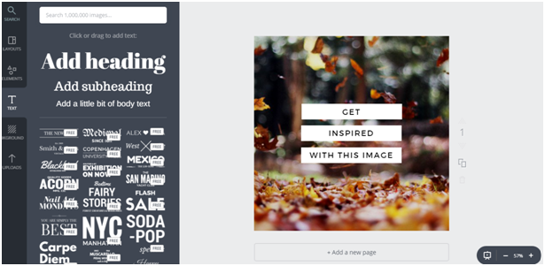 shareable social media graphics-canva 2.png