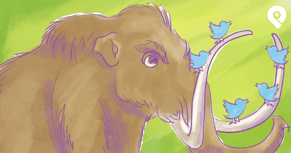 6 Ways for Beginners to GROW a Mammoth-Sized Twitter Following (yes, Organically!!)