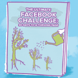 use-facebook-for-business