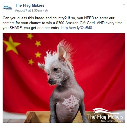 Facebook posting strategy: The Flag Makers example